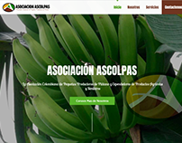 ASOCIACIONASCOLPAS.COM