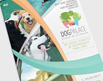 Publicidade Dog Palace