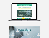E-newsletter Dardus