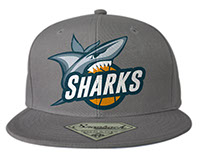 Team Basketball Shark