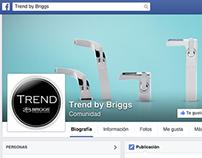 Proyecto digital en redes socialeas Trend by Briggs