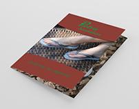 Catálogo - Pietra Sandálias