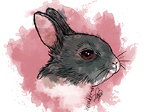 Bunny - Collection WATERCOLOR ANIMALS