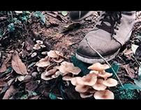 Um Filme de Matheus + Maine