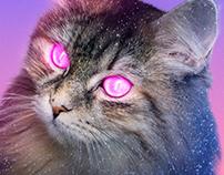 Poster 014 - Experimental Neon Cat