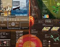 Megagráfico - Infografía