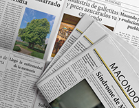 Macondo Newspaper