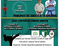 Cartelera Seminario Karate