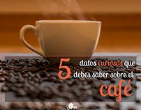 Posts Café