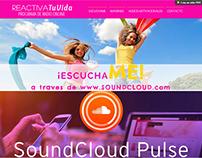 PAGINA WEB PROGRAMA RADIAL