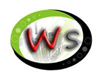 QS Brazil's Visual ID