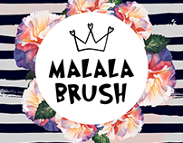 MALALA BRUSH Marketing Strategy & Design