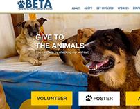 BETA website and gala brochure