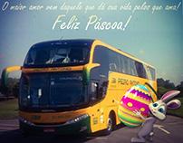 Viação Pedro Antônio - Fanpage