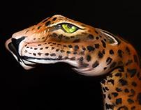 Body Paint Jaguar