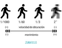Infografías y logotipo zumafocus