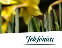 Creatividad y diseño - Telefonica Costa Rica