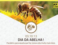 MN Própolis - Newsletter de Desconto