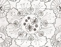 Desenhos de observação / mão livre