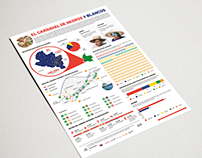Diseño de infografía - Carnaval de negros y blancos
