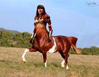 Mesclagem Animais- Centauro e cavalo marinho - 01/06/18