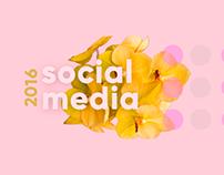 Social Media - Post's 2016
