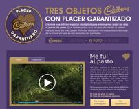 Cadbury Placer Garantizado