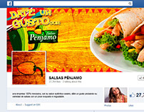 Salsas Pénjamo - Look and Feel Social Media