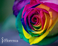 """Proyecto """"Florenza"""""""