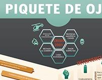 Infografía - Piquete de Ojo