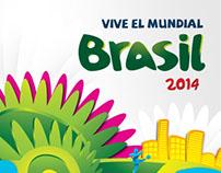 Social Networks: Brazil 2014