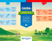 Infográfico - Mapa de Gados - Ourofino
