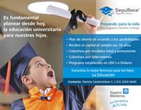 Seguros Monterrey - New York Life - Web Ads