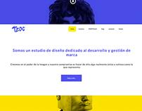 Desarrollo web TAJALAPIZDC