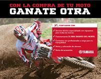 Template Mercadolibre Frontera Motors
