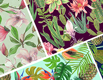 Cold drink pattern design Tropical Cactus and Magnolia