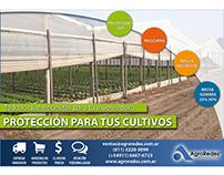 Publicación para Revista Informe Frutihortícola