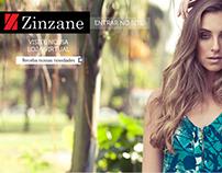 Site - Zinzane - 2012