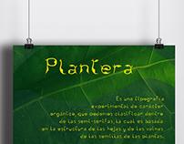 PLANTERA • Typography