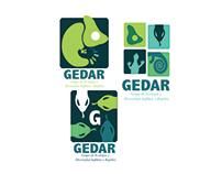 Re Diseño GEDAR