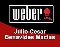 Diseño de imagen para Weber.