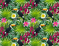 Tropical Patterns - birds and flowers