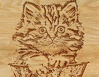 Textura en madera