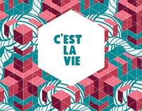Stromae  Worldtour: C'est La vie