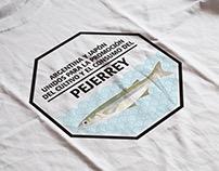 Logotipo Pejerrey para JICA (Fusión Boutique Creativa)