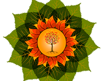 Sinergia Sana - Natural Medicine
