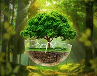 Natureza frágil
