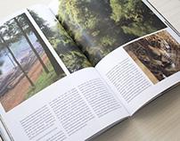 Revista Cosas Nuestras. Especial Misiones