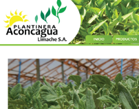 Página Web Plantinera Aconcagua.