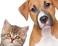 6º Feria de Mascotas - Centro Comercial Niza